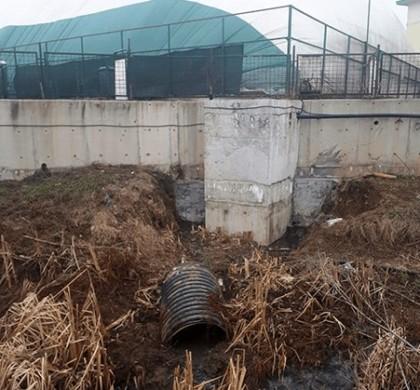 Poluarea apelor din Ilfov, confirmată de autorități