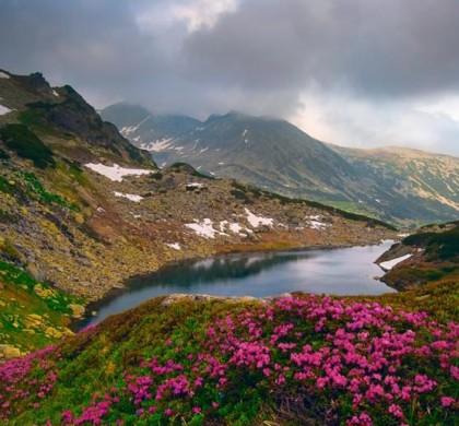 Excluderea custozilor ariilor naturale protejate: de ce am votat împotrivă
